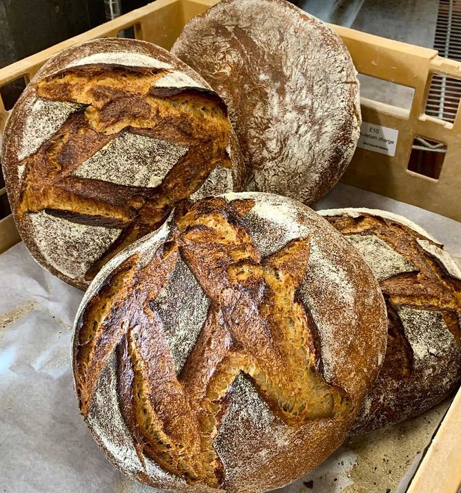 Wild Hearth Sourdough Miche Half Fresh Bread